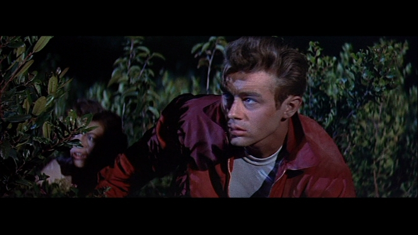james dean quotes rebel without a cause