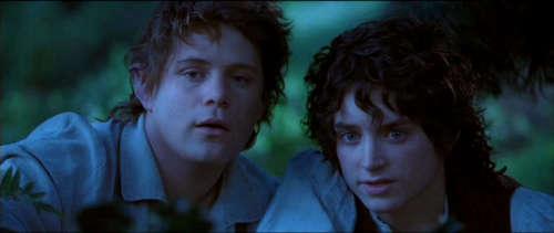 Sam & Frodo