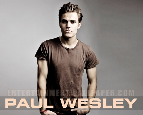 Sexy Paul Wesley Wallpaper