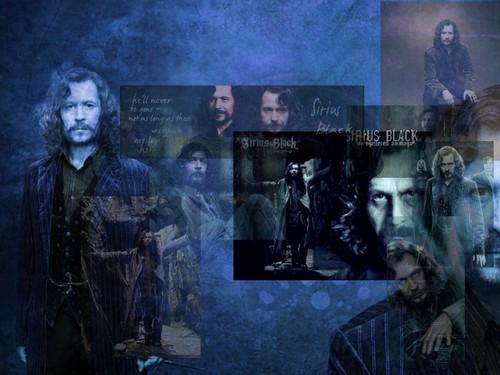 Sirius Black wallpaper called Sirius