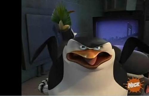 Penguins of Madagascar پیپر وال titled Skipper gets mad