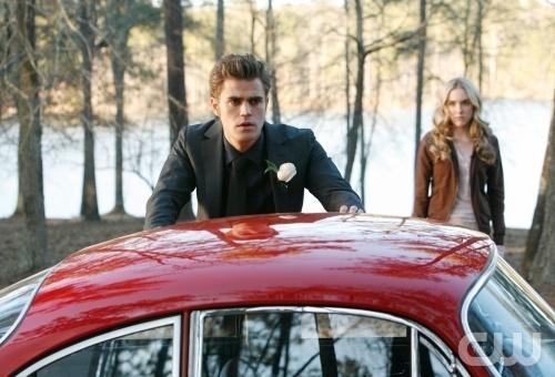 Stefan 7 Amber 1x19