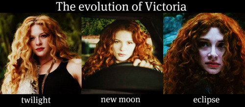The Evolution of Victoria