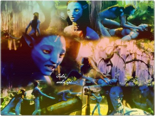 Avatar wallpaper titled The first invasion