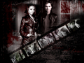 b/d - the-vampire-diaries-couples wallpaper