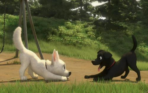 Disney's Bolt پیپر وال entitled bolt playing with other dog
