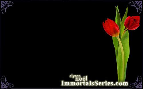 immortals 바탕화면