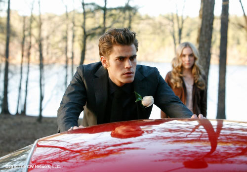 http://images2.fanpop.com/image/photos/11300000/stills-1x19-Miss-Mystic-Falls-the-vampire-diaries-tv-show-11309786-500-348.jpg