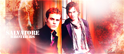 Damon and Stefan Salvatore wallpaper entitled the salvatores