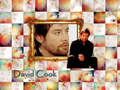 Cool David Wallpaper - david-cook wallpaper
