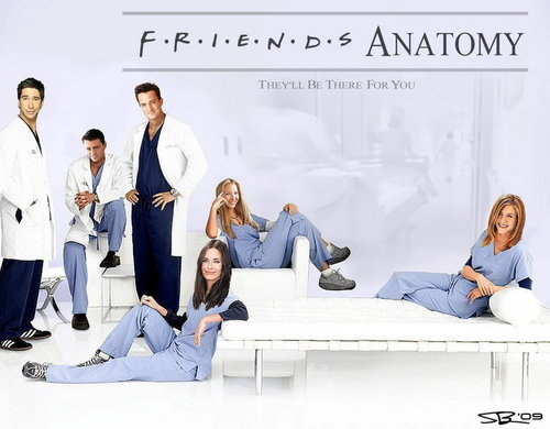 Friends Anatomy