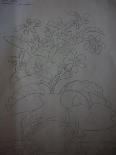 Rawak Drawing