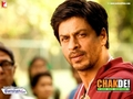 SRK chak de India - shahrukh-khan wallpaper