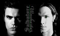 Sam and Stefan - the-salvatores-vs-the-winchesters photo