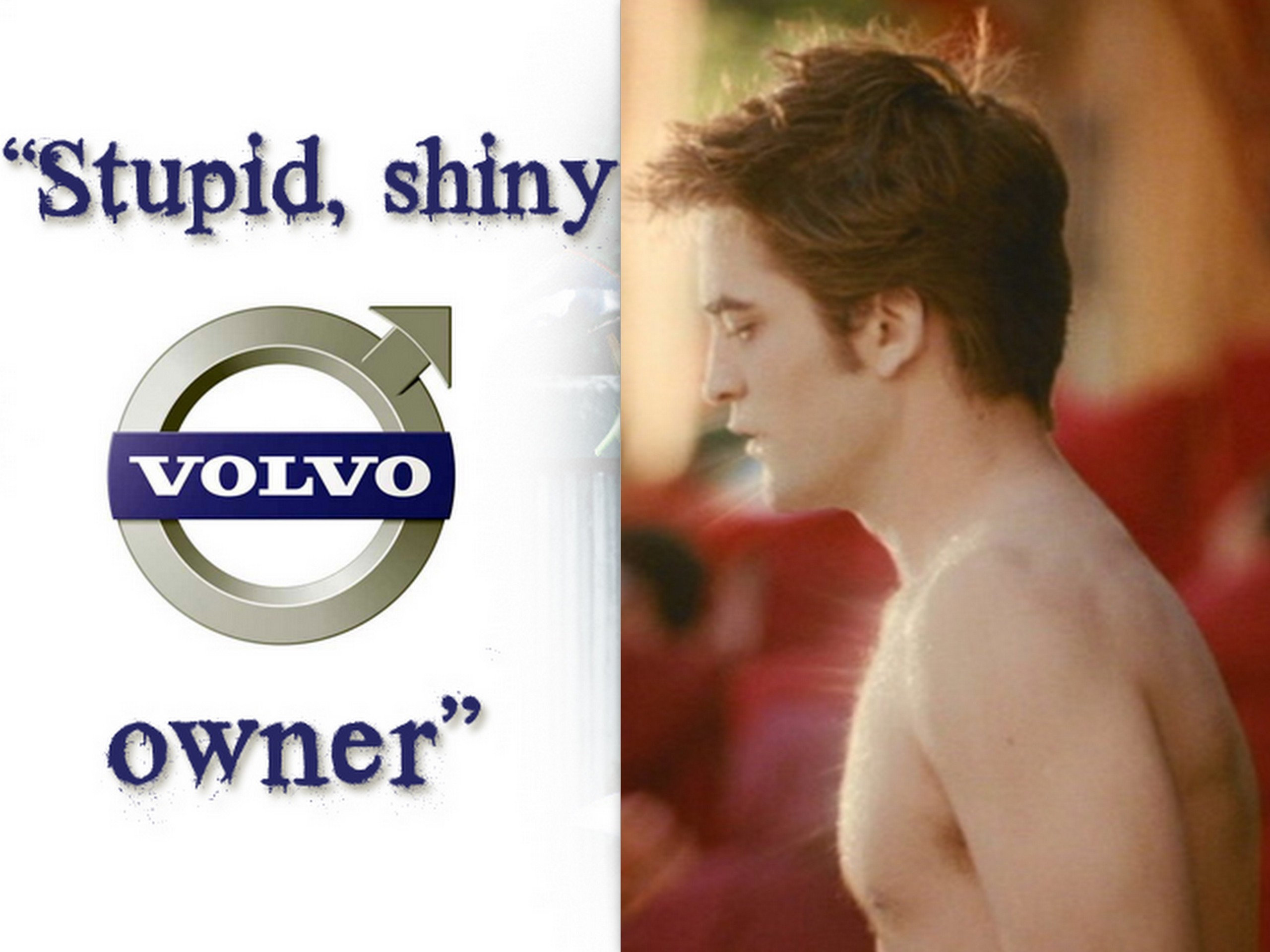 Stupid,shiny Volvo owner