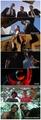 Tarantino Films
