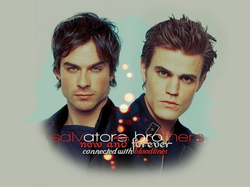 Damon and Stefan Salvatore پیپر وال entitled The Salvatores