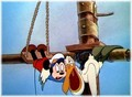 Tugboat Mickey - mickey-mouse screencap