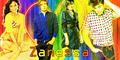 Zanessa - zac-efron-and-vanessa-hudgens fan art