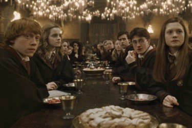 harry,hermione, ginny, ron