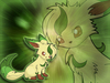 its a cute leafeon
