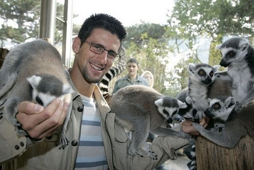 novak and animals
