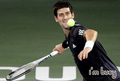 novak busy