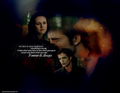 You said forever and always - twilight-series photo