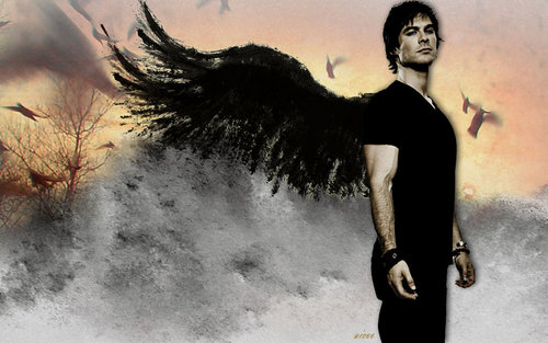 Damon Salvatore wallpaper titled Damon