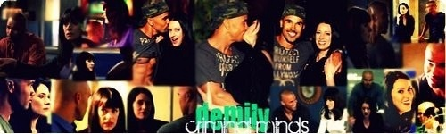 Demily Collage