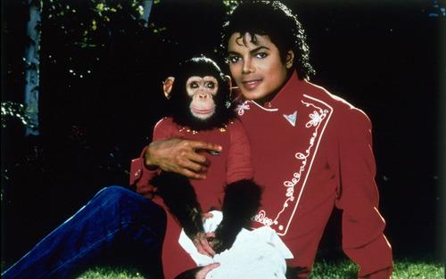 Michael's pets