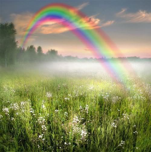 Rainbow Skies Photo (11564835)