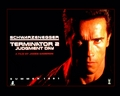 T2 gallery 1 - terminator photo