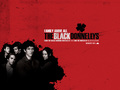 The Black Donnellys - the-black-donnellys wallpaper