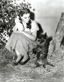 Toto and Dorothy - toto-the-wizard-of-oz photo