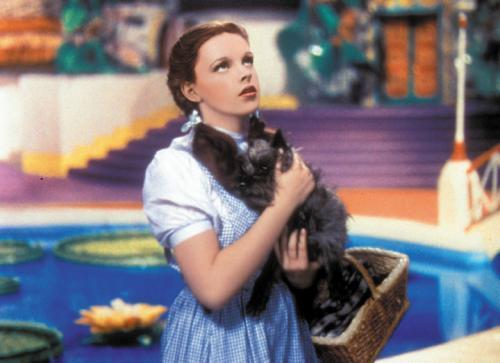 Toto and Dorothy