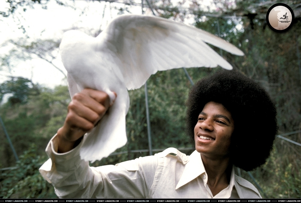 DIA DE LA TIERRA HOMENAJE PARA MIKE Various-Photoshoots-Fin-Costello-Photoshoot-8-michael-jackson-11562261-1000-676