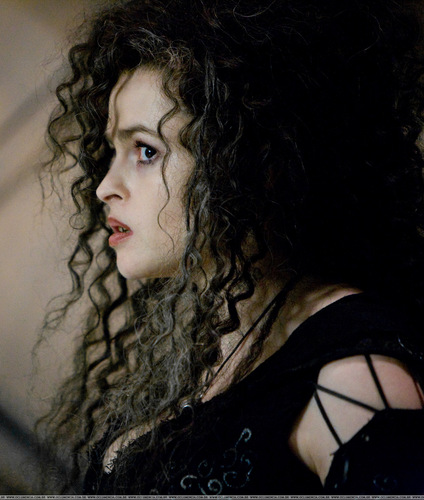 Bellatrix Lestrange images bellatrix HD wallpaper and background photos