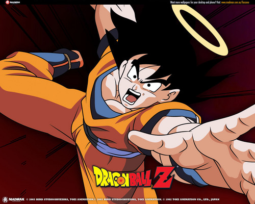 Dragon Ball Z fond d'écran entitled Goku