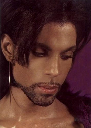 Prince wallpaper titled prince
