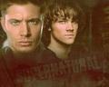 supernatural - Brothers wallpaper