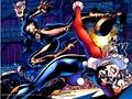 Catwoman VS Harley Quinn