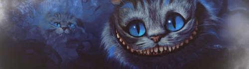 Cheshire cat banner