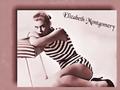 Elizabeth Montgomery Swimsuit