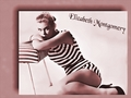 Elizabeth Montgomery Swimsuit - elizabeth-montgomery wallpaper