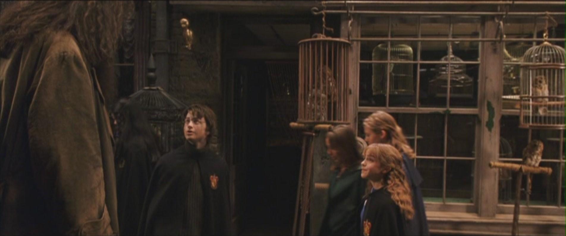 Harry amp hermione secret affair 7