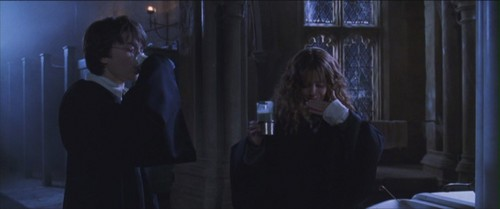 harry dan hermione wallpaper called Harmony - Chamber of Secrets