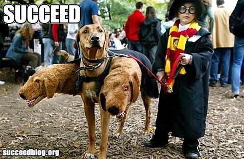 Harry Potter fun :)