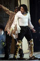 Large photos - michael-jackson photo
