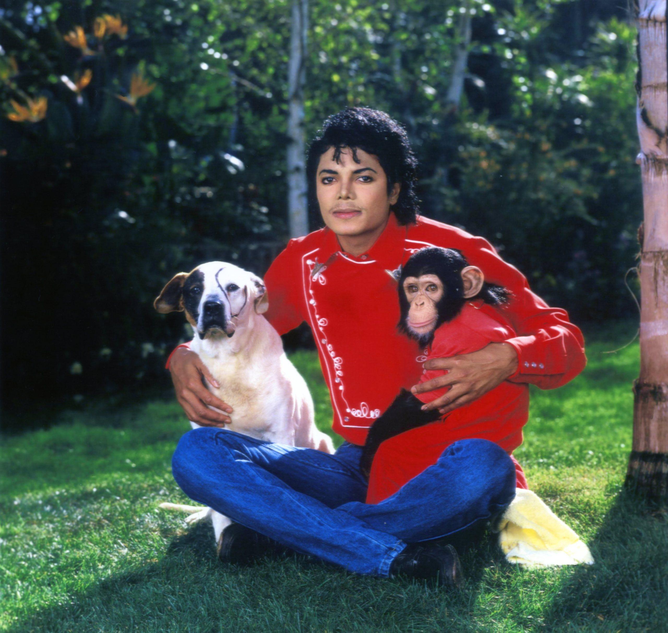 DIA DE LA TIERRA HOMENAJE PARA MIKE - Página 2 MJ-with-animals-michael-jackson-11640714-2560-2425
